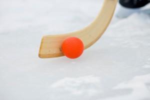 Сделать ставки на хоккей с мячом и победить